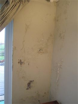 Damp problems due to wet cavity wall insulation