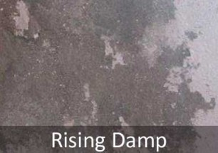 Rising Damp Problems in Sussex and Hampshire