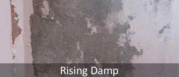 Rising Damp Problem